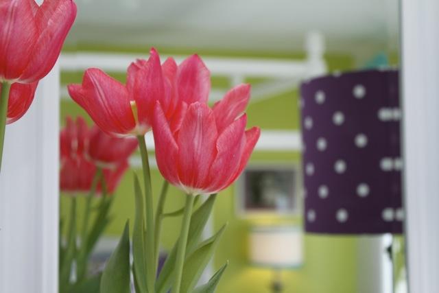 Katie flowers s:f